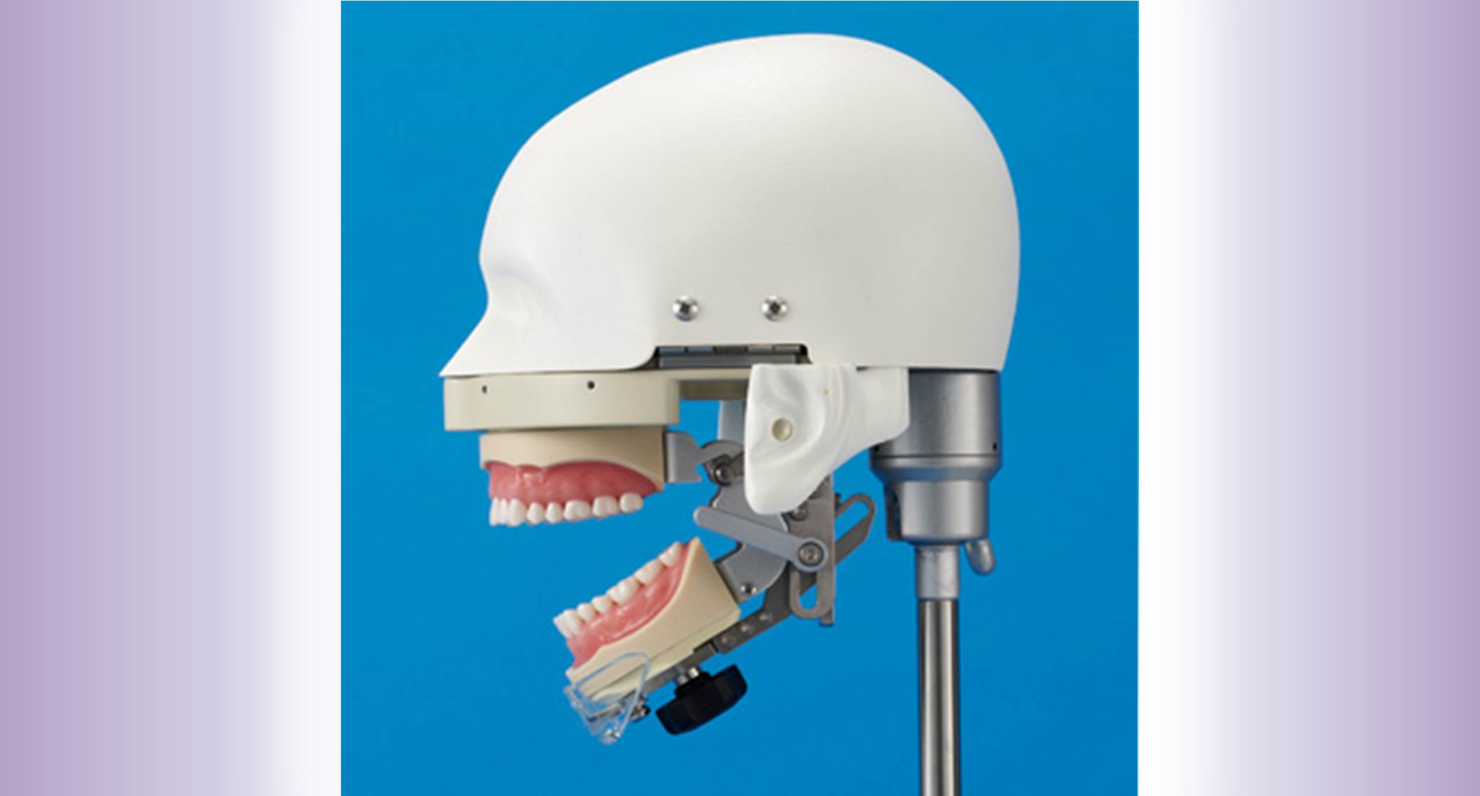 Dental Training widget