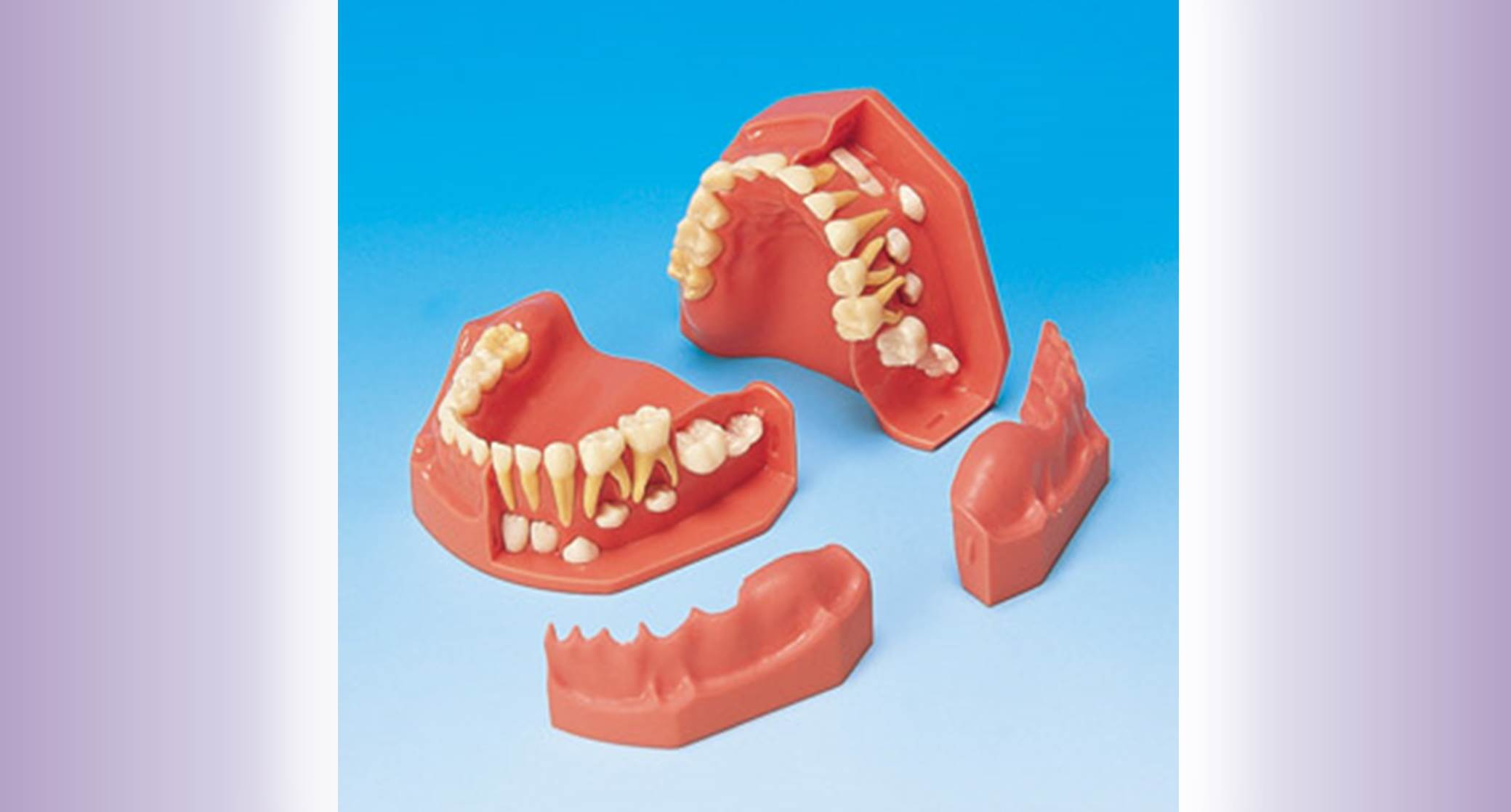 Pediatric Dentistry widget